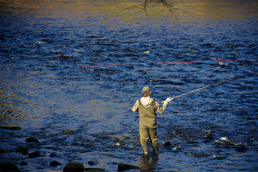 A fisherman standing fishing for salmon in a river